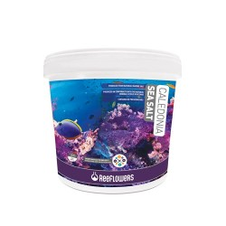 Reeflowers Caledonia Sea Salt 6,5 Kg